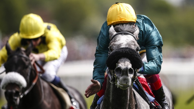 Girl done well: Frankie Dettori gives Coronet a pat after her emphatic win