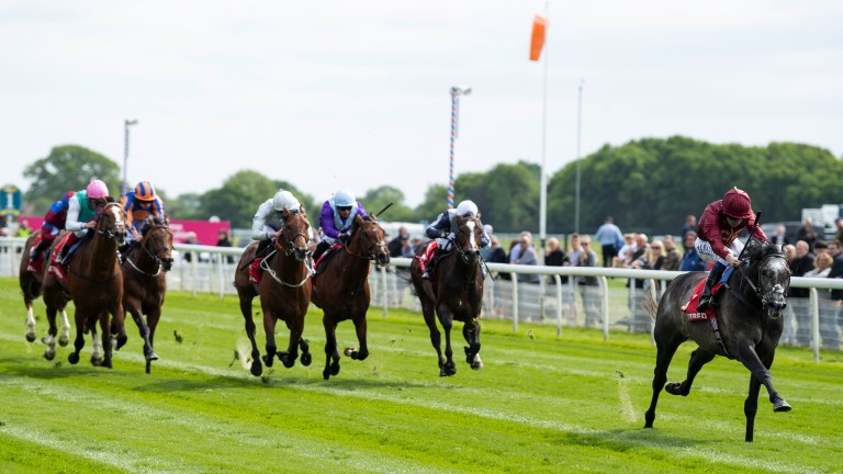 The Lion roars: John Gosden's Roaring Lion wins the Group 2 Dante Stakes in impressive fashion