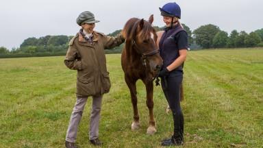 HRH Princess Anne, patron of World Horse Welfare