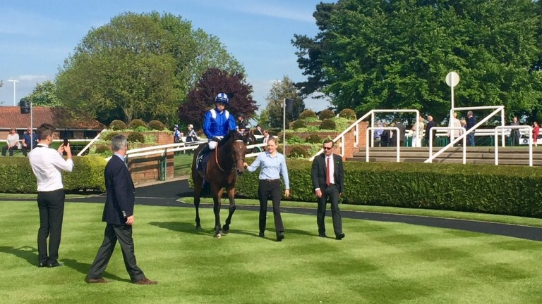 Wadilsafa: boasts a progressive profile and appears the one to beat in the Smarkets Fortune Stakes at Sandown
