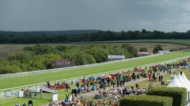 Goodwood: lovely scenery, ugly scenes