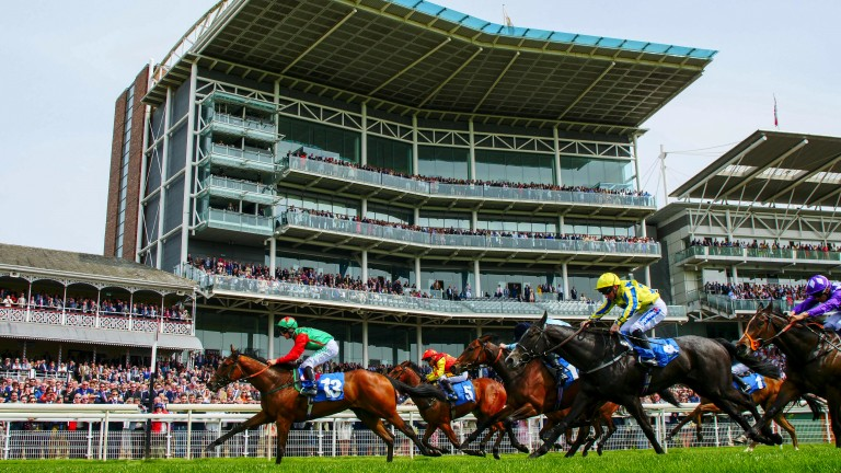 Dash to the line: Signora Cabello lands the opening Marygate Fillies' Stakes at York