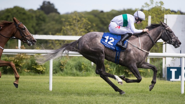 Who's Steph has been supplemented to run in the Irish 1,000 Guineas