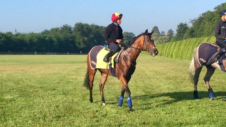 Without Parole and Frankie Dettori after working on the Limekilns