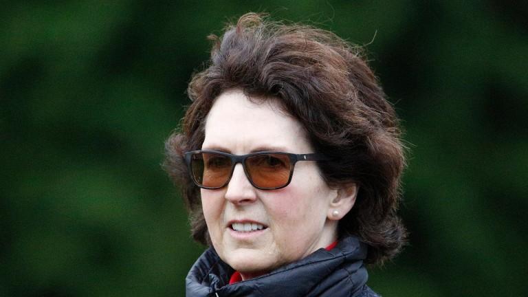 Venetia Williams: dual big-race interest for the trainer