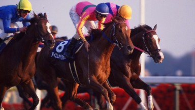 T M Opera O (8) lands the 2000 Japanese Cup, helping him to a prize-money record that stood until 2017