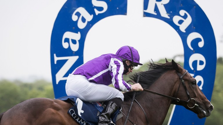 Sergei Prokofiev: barely came off the bridle to win the Rochestown Stakes