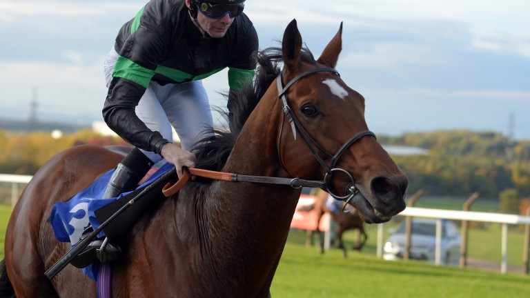 Nearly Caught bids to retain the Prix Kergalay after winning the race in 2016