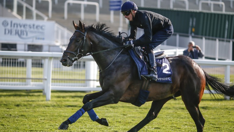 Ready to roll: Young Rascal strides out under James Doyle