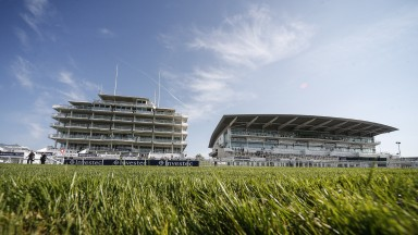Calm before the storm: Epsom looks in excellent shape as the Derby meeting draws near