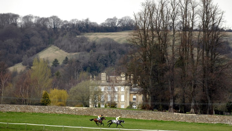 Andoversford point-to-point, where jockey Sam Lee threw a temper tantrum after Howld Your Whist refused to start