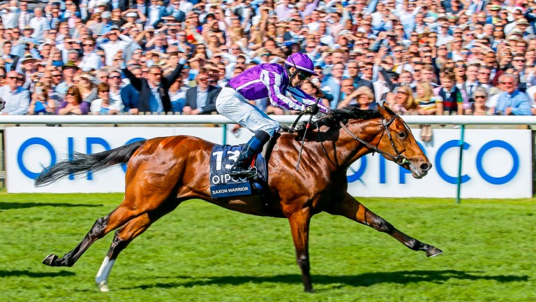 Saxon Warrior storms to victory in the 2,000 Guineas