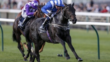 Elarqam and Jim Crowley in winning action at Newmarket last year