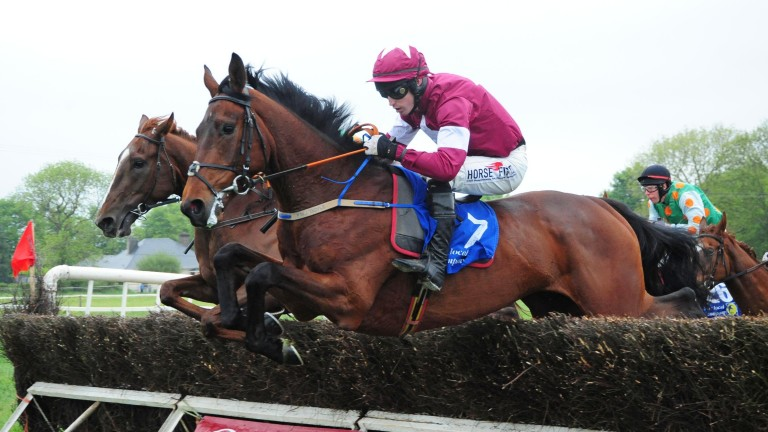 Fury Road: looked a future star when winning at Down Royal
