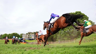 Saturday action from the two-day fixture, which featured 13 races as the good ground attracted a strong list of entries