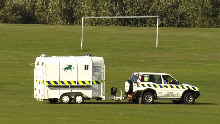 Racecourses are well equipped to deal with equine injuries, including through the use of horse ambulances