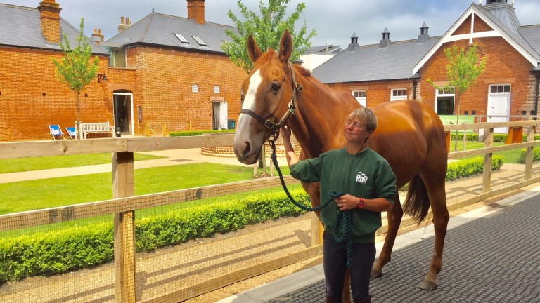 Sire de Grugy with Sue Molloy at Palace House