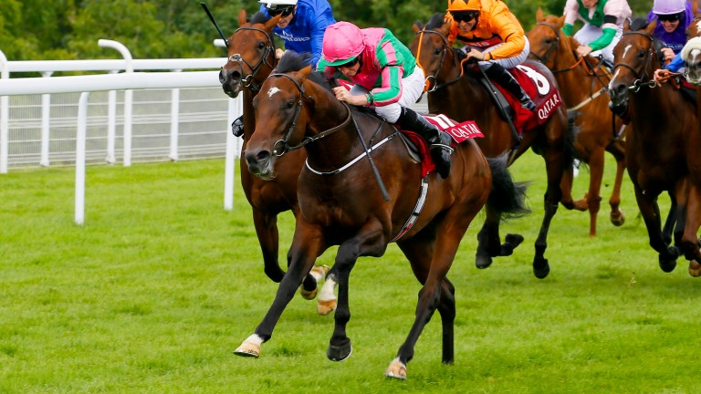 War Decree storms clears in the Group 2 Vintage Stakes at Goodwood