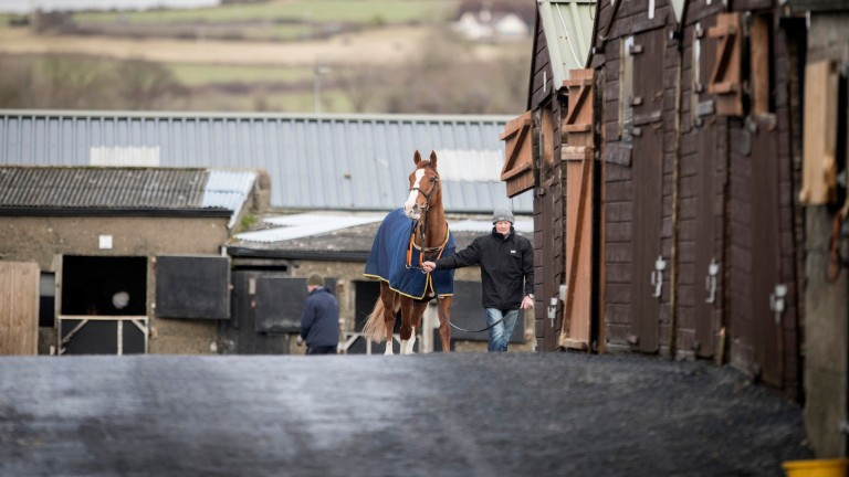The training of racehorses includes significant bills for staff and veterinary care