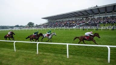 What a start: short-priced favourite What A Welcome wins the opener under Joey Haynes