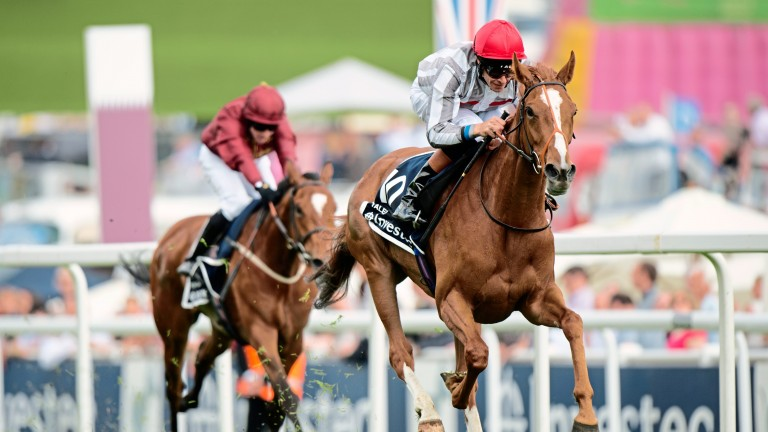 Talent: winner of the Oaks and dam of Group 2 winner Ambition
