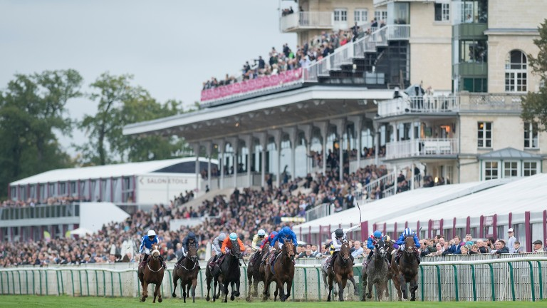 Battaash: makes his return in the Temple Stakes