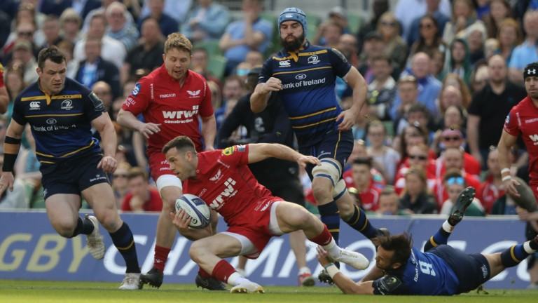 Leinster demolished Scarlets 38-16 in the Champions Cup semi-final