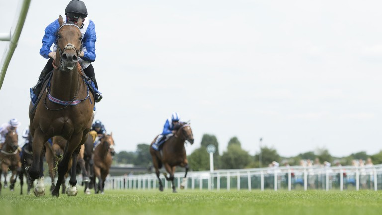 Battaash is the star attraction at Haydock in the Temple Stakes