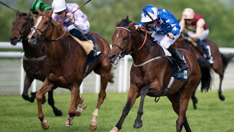 Aspetar (near): won the Cocked Hat Stakes at Goodwood on his second start and could run at Chantilly on Sunday