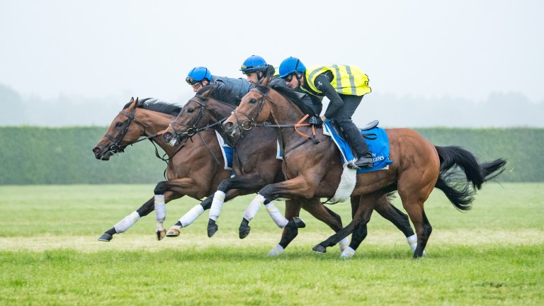 Wild Illusion (William Buick) far side mixes it with Alqamar and African Jazz pic Jason Bax