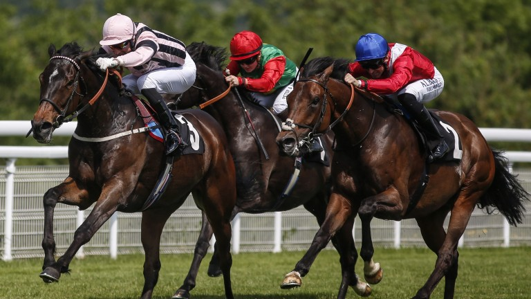 First Sitting holds off Autocratic to land his second Festival Stakes at Goodwood