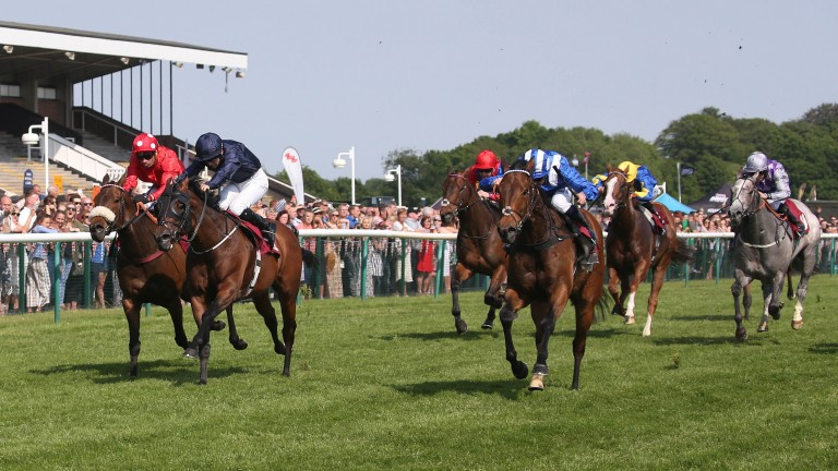 Battaash (striped cap) and Dane O'Neill land the Group 2 Temple Stakes at Haydock