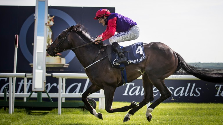Romanised and Shane Foley cross the line in the Irish 2,000 Guineas