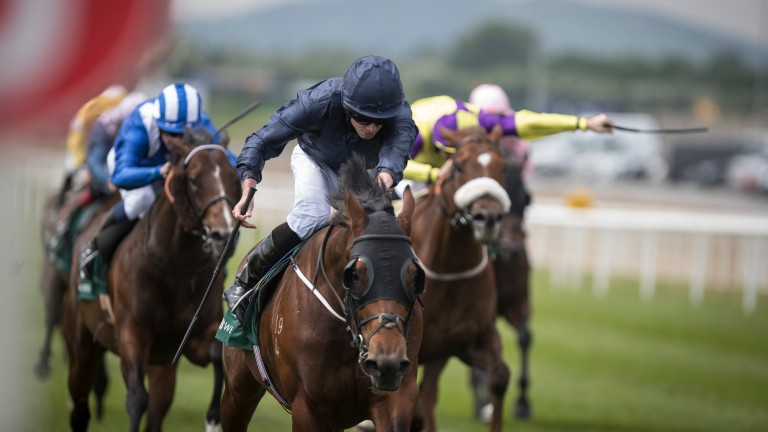 Steaming home: Aussie import Merchant Navy makes his first start for Aidan O'Brien a winning one