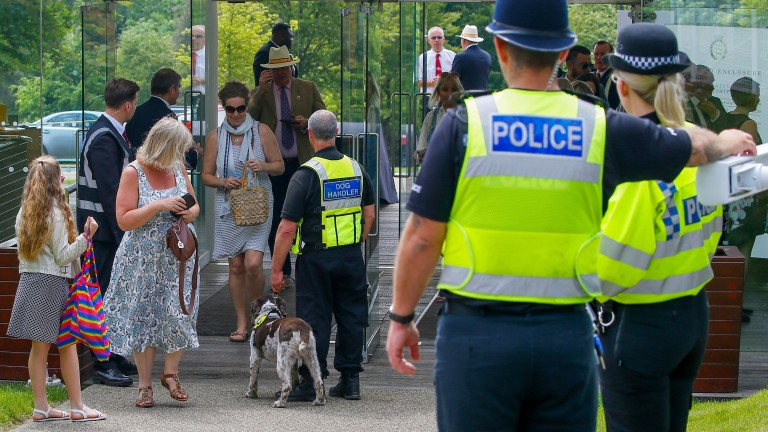 Racegoers seemed unperturbed by sharing their day at Goodwood with sniffer dogs and police officers