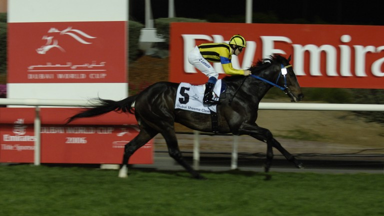Heart Of Grace's sire Heart's Cry wins the 2006 Dubai Sheema Classic