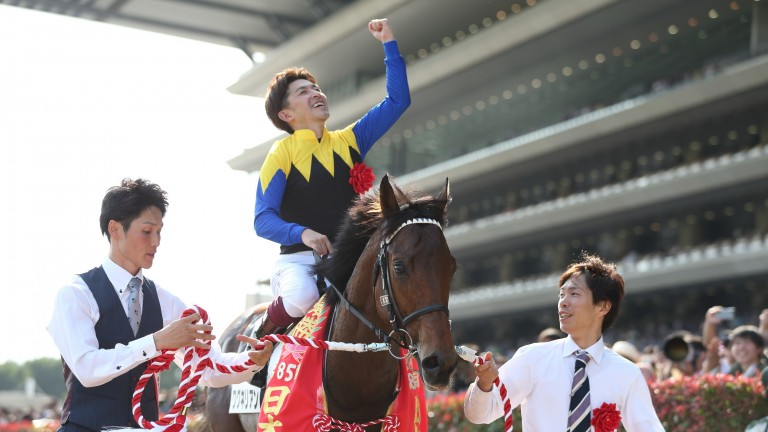 Wagnerian: the son of Deep Impact won the Japanese Derby (picture: Masakazu Takahashi)