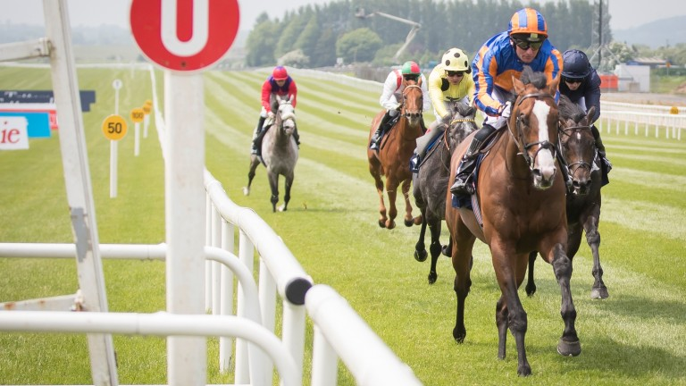 Lancaster Bomber storms clear in the Tattersalls Gold Cup