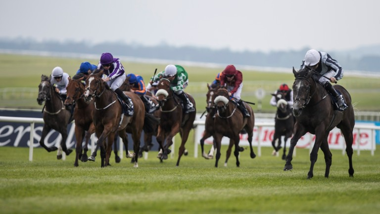 Top dog: Alpha Centauri (right) storms home to land the Irish 1,000 Guineas
