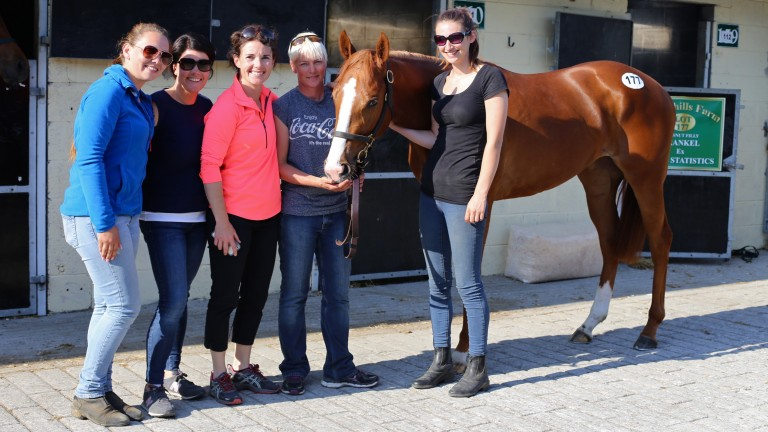 Katie Walsh and the Greenhills Farm team with the sale-topping Frankel filly at Goresbridge