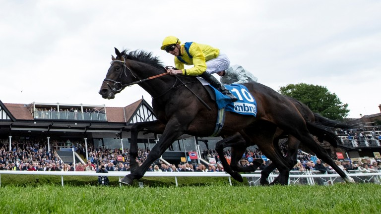 Young Rascal beats Dee Ex Bee in the Chester Vase