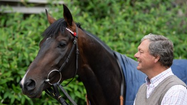 Trainer William Haggas with Derby colt Young Rascal at Somerville Lodge stables in Newmarket 23.5.18 Pic: Edward Whitaker