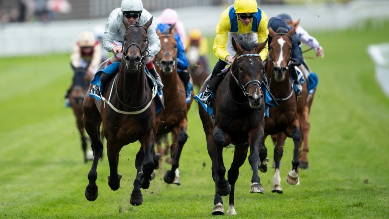 Young Rascal (yellow) comes home strongly to take the Chester Vase