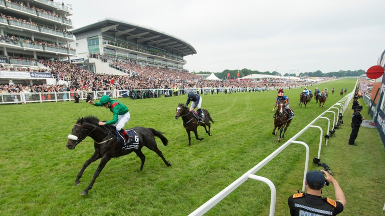 Harzand: wins the 2016 Derby at Epsom with Pat Smullen on board