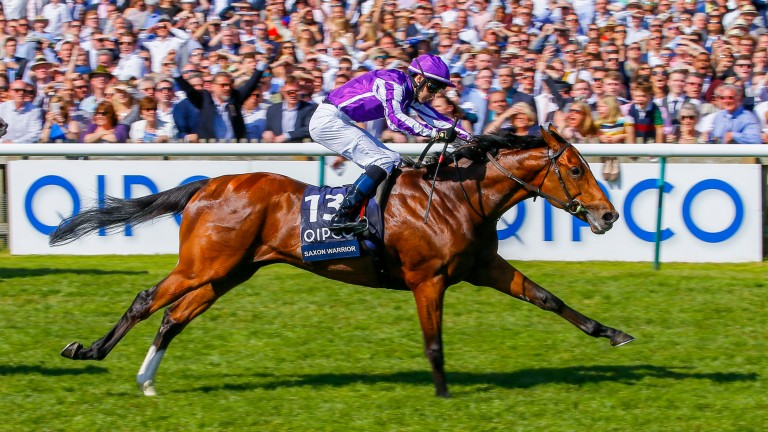 Saxon Warrior: bids to become the 13th Derby winner trained at Ballydoyle