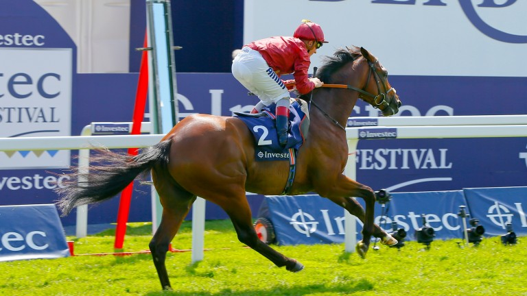 Arod will be back at the scene of his 2015 Diomed Stakes success if the ground is suitable