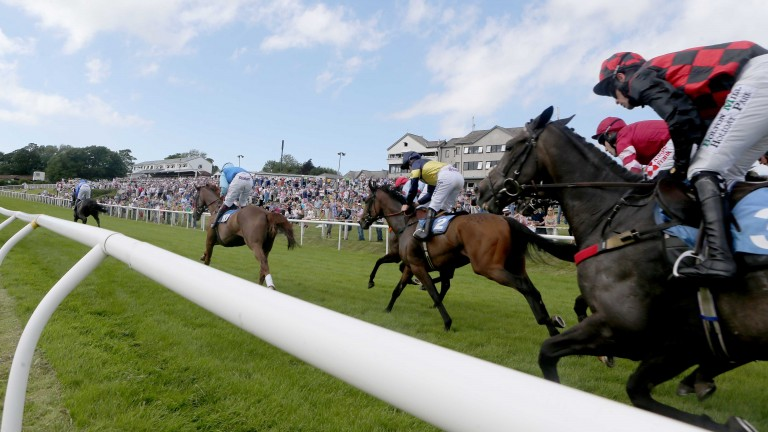 Hexham hosts the first three-year-old hurdle of the season on Derby day