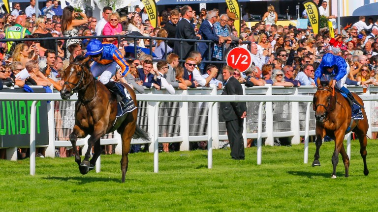 Wild Illusion (William Buick) has no answer as Forever Together surges clear