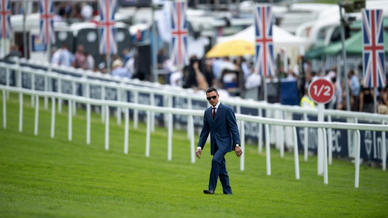 Cool dude: Frankie Dettori walks the course before racing