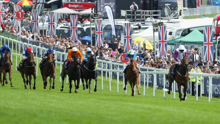 Marie's Diamond (third from right) was no match for Cosmic Law in the Woodcote Stakes but has won since